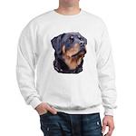 bitchhead2glow.png Sweatshirt