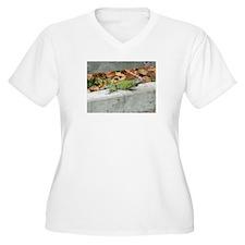 Caribbean Iguana T-Shirt