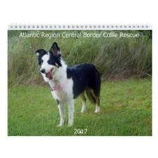 Cute Border collie rescue bonsai Wall Calendar