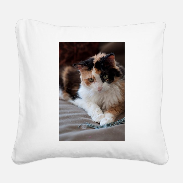_DSC0028.jpg Square Canvas Pillow