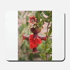 Pomegranate Cross Mousepad
