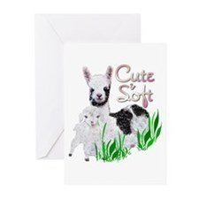 Love Song Greeting Cards (Pk of 10)