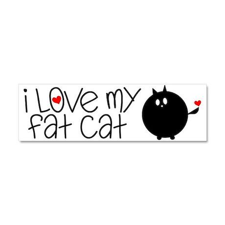 I Love My Fat Cat Car Magnet 10 x 3