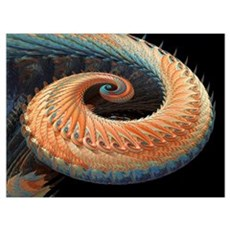 Dragon tail fractal Poster