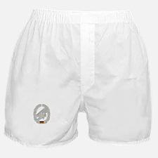 West German Paratrooper Boxer Shorts