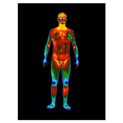 Thermogram of a standing naked man (front view) Poster