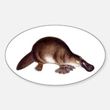 Platypus Oval Decal