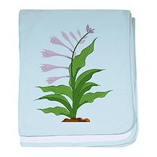 Flowering Hosta baby blanket