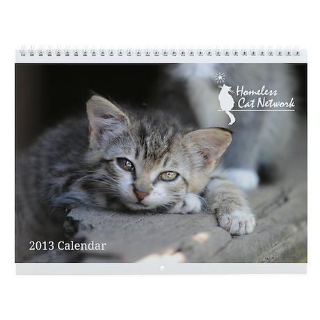 2013 Homeless Cat Network Wall Calendar