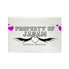 Property of Jasam Rectangle Magnet