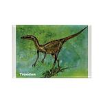 Troodon Dinosaur Rectangle Magnet (10 pack)