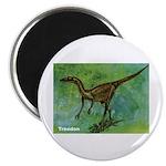 Troodon Dinosaur Magnet