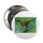 Troodon Dinosaur Button