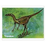 Troodon Dinosaur Small Poster
