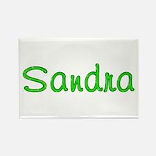 Sandra Glitter Gel Rectangle Magnet
