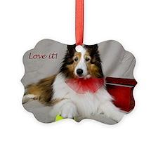 Love it! Ornament