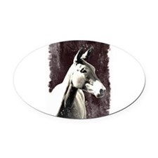 Mule Oval Car Magnet