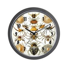 Haeckel's Arachnida Wall Clock