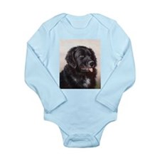 Painting of Newfoundland Long Sleeve Infant Bodysu