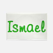 Ismael Glitter Gel Rectangle Magnet