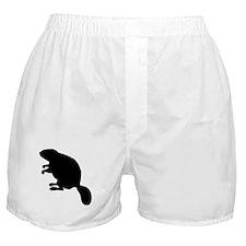 Beaver Boxer Shorts