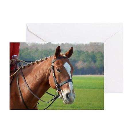 Huntsman's Horse Greeting Card