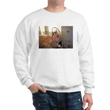 Cool for Cats Sweatshirt