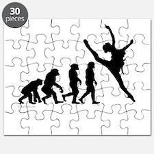 Evolution of Dance Puzzle