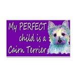 Perfection Rectangle Car Magnet
