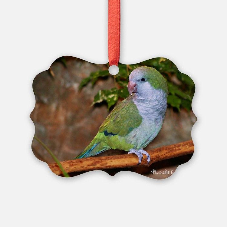 Quaker Parrot Ornament