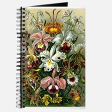 1904 Orchids Art Forms of Nature Print Journal