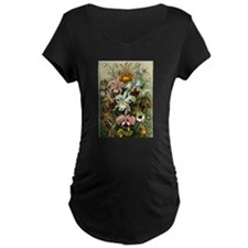 1904 Orchids Art Forms of Nature Print T-Shirt