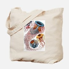 1904 Jellyfish Art Forms of Nature Print Tote Bag