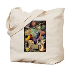 Antique 1904 Sea Anemone Nature Print Tote Bag
