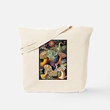 Antique 1904 Sea Anemone Nature Print Tote Bag