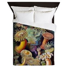 Antique 1904 Sea Anemone Nature Print Queen Duvet