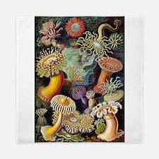 Antique 1904 Sea Anemone Nature Print Queen Duvet