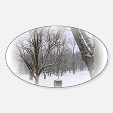 Beautiful Winter Scene Decal