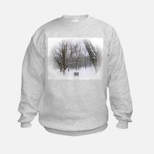 Beautiful Winter Scene Sweatshirt