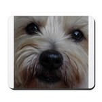 The Soul of a Terrier Mousepad