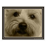 The Soul of a Terrier  Small Poster