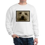 The Soul of a Terrier  Sweatshirt
