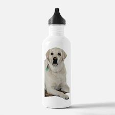 Yellow lab Water Bottle