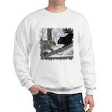 Black squirrel Hoodies & Sweatshirts