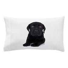 Curious Black Labrador Pillow Case