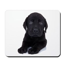 Curious Black Labrador Mousepad