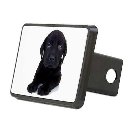 Curious Black Labrador Rectangular Hitch Cover