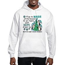 Holiday Penguins PKD Hoodie