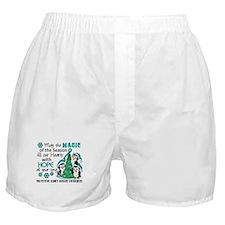 Holiday Penguins PKD Boxer Shorts