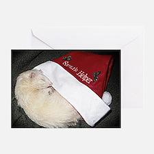 Santas Fuzzy Helper Greeting Card
